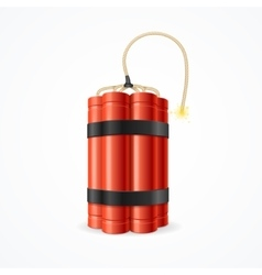 Detonate Dynamite Bomb vector image vector image