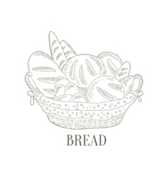 Different Bread In Wicker Basket Hand Drawn vector image vector image