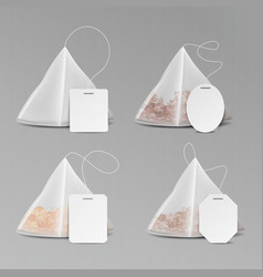 Pyramid shape tea bag set mock up with empty vector