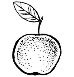 Apple sketch hand draw vector