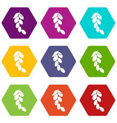Branch of cornel or dogwood berries icon set color vector