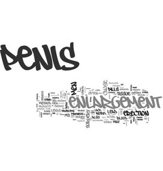 is penis enlargement safe text background word vector image vector image