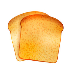 couple of bright realistic tasty toasts on white vector image