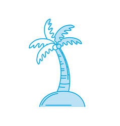 silhouette palm with coconuts and leaves vector image vector image