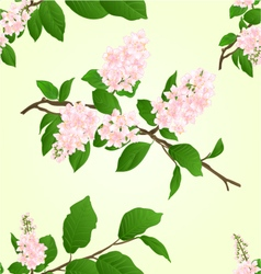 Seamless texture pink lilac branch vector