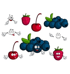 Cartoon cherry raspberry blueberries characters vector