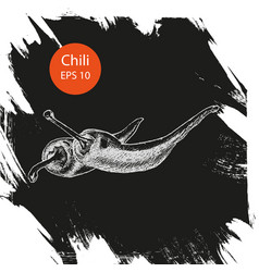 chili peppers ink sketches set contour outline vector image