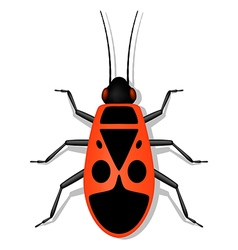 Soldier-bug vector image vector image