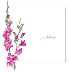 Long orchids minimal card vector
