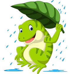 frog under leaf vector image