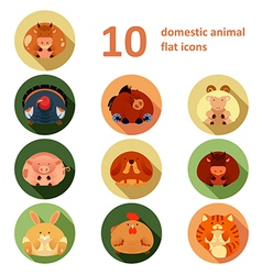 Flat animals vector image vector image
