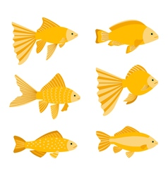 Goldfish set isolated on white background yellow vector