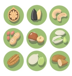 Nuts icon set peanut cashew pistachio and vector