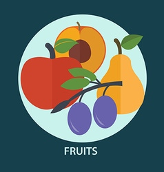 Set of fresh fruit for your design vector