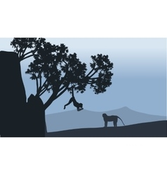 Silhouette of monkey in fields vector