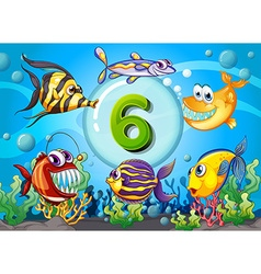 Flashcard number six with 6 fish underwater vector