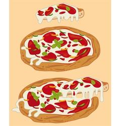 Italian handmade pizza 1 vector image
