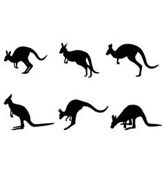 Kangaroo silhouettes vector