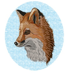 old fox vector image