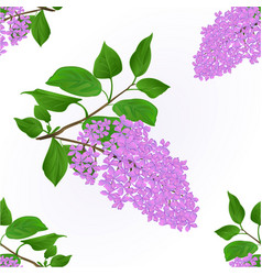Seamless texture lilac twig with flowers vector