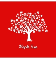 white maple tree silhouette on red background vector image vector image
