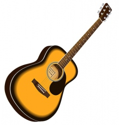 vector acoustic guitar vector image