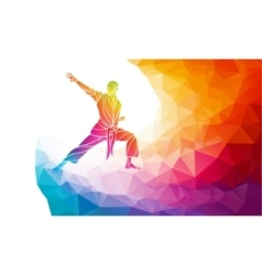 Martial arts jump kick color rainbow silhouette vector