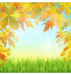 autumn leaves on the abstract background of the vector image vector image