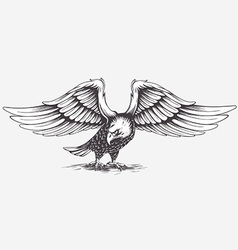 Detailed Hand Drawn Eagle vector image vector image