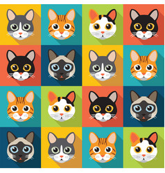 pattern of cute cats vector image vector image