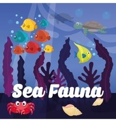Sea Fauna graphic design vector image vector image
