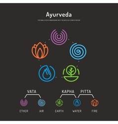 Ayurveda body types 01 vector