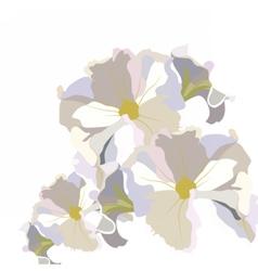 Vintage Delicate White geranium Flower vector image