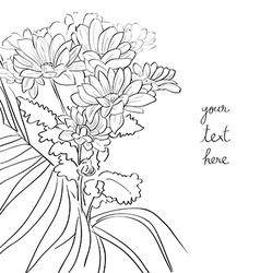 floral sketch card vector image