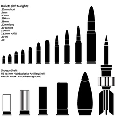 ammunition vector image vector image