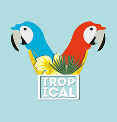 Beautiful guacamaya over blue background vector