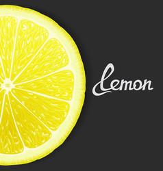 Just lemon vector