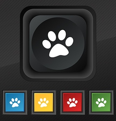 Paw icon symbol set of five colorful stylish vector