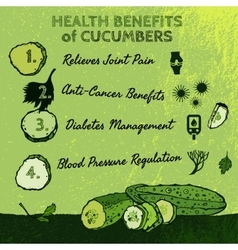 Cucambers health benefits 01 a vector