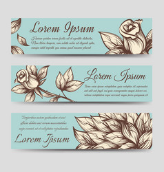 vintage banners with roses and leaves vector image