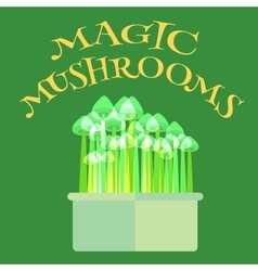 Magic mushrooms grow kit vector