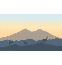 Antelope in hills scenery of silhouette vector