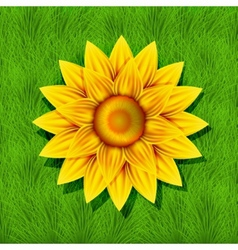 creative yellow flower on grass background vector image