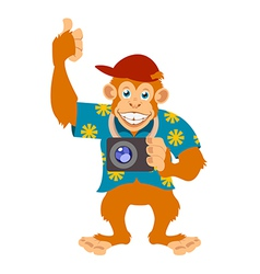 Monkey with a cam vector image vector image