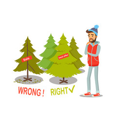 Sale and offer christmas tree vector
