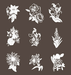 hand drawn flower design elements vector image
