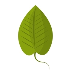 Green leaf or leaves ecology icon design vector image