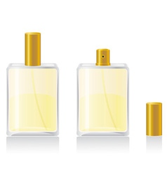 perfume 02 vector image vector image
