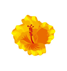 Tropical flower icon vector
