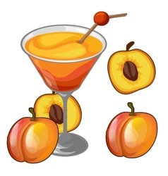 Peach cocktail in a glass with straw and fruit vector